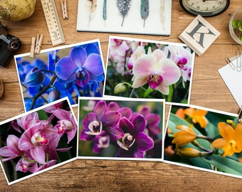 Gardening Gift, Set of 5 Orchid Photo Note Cards, Photo Note Card Set, Floral Greeting Card Set, Thank You Cards, Gifts for Her,