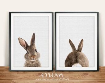 Rabbit Print set , Nursery Animal print, Wall Art, Woodlands Nursery Decor,Baby Shower Gift, Woodlands animal, Rabbit Photo, Bunny print