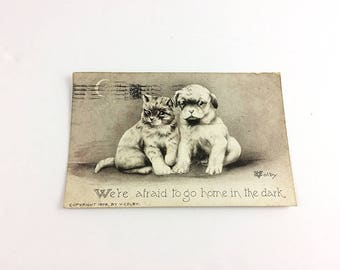 V. Colby Postcard Puppy Kitten 1909 Antique afraid to go home in the dark black and white collectible mail one cent stamp Ben Franklin