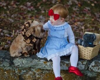 Little Girls Dorothy Costume- Halloween costume, gingham dress, Dorothy birthday dress