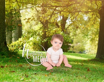 Baby Child Outdoor Nature Backdrop Scene with Grass & Trees - Digital Photography Background Spring Prop for Children - Instant Download