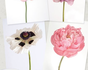 Flower Photo Notecard - Flower Collection of Ranunculus, Hellebore, Poppy, Peony, Note Card, Floral Notecard, Stationery, Blank Notecard