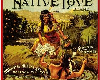 Monrovia Native Love Orange Citrus Fruit Crate Box Label Art Print