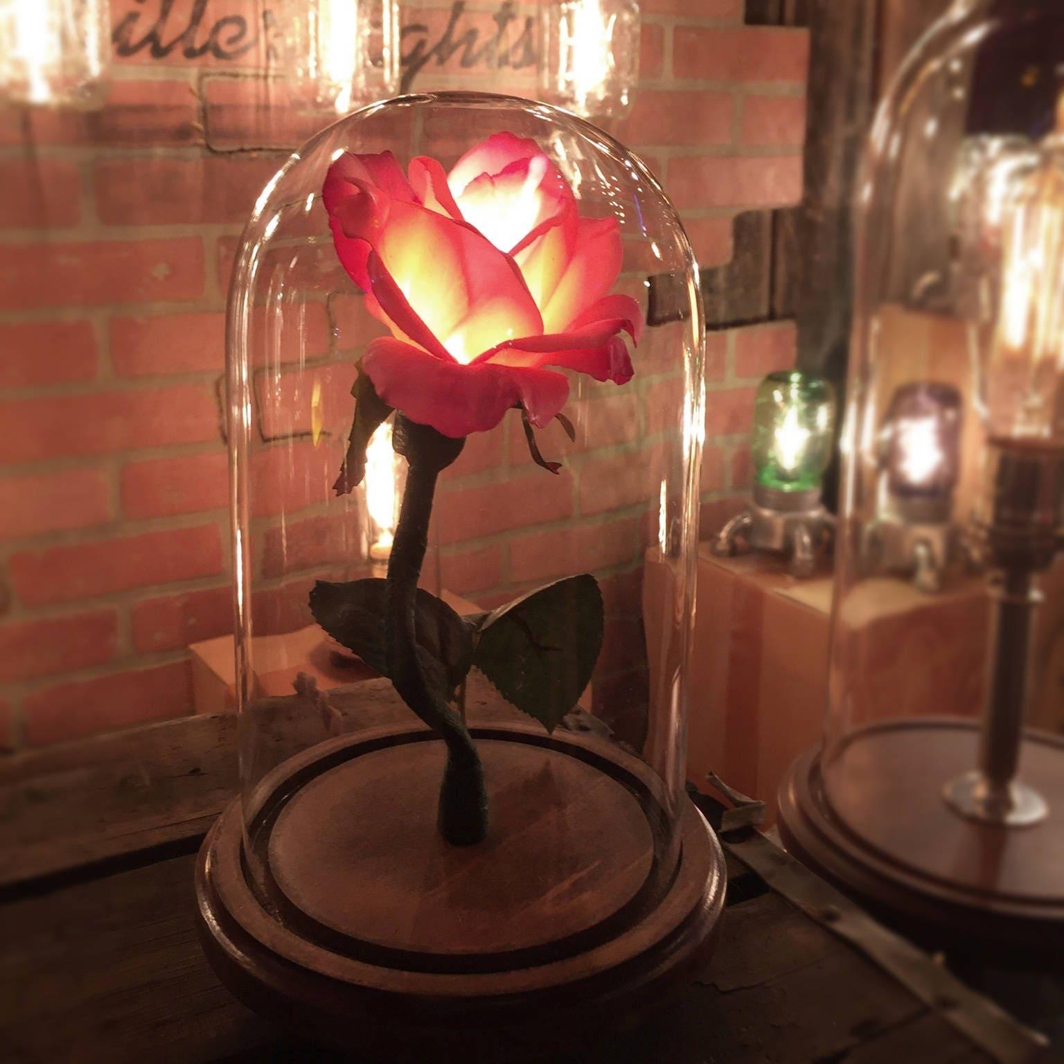 La beauté de la Belle et la bªte enchanté rose style fleur