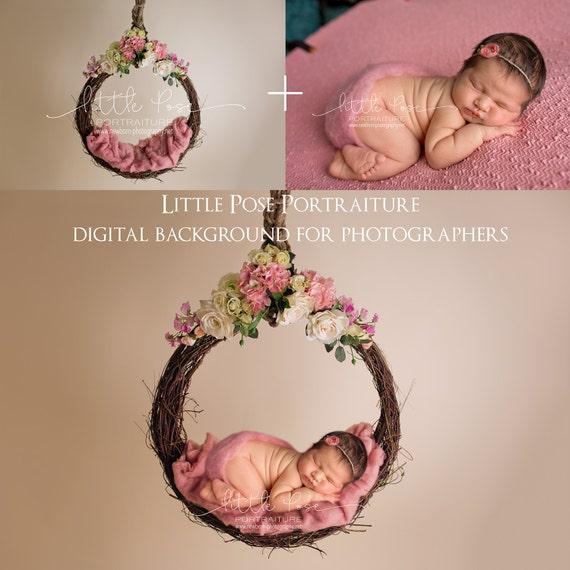 Little pose hanging vine basket pink newborn digital