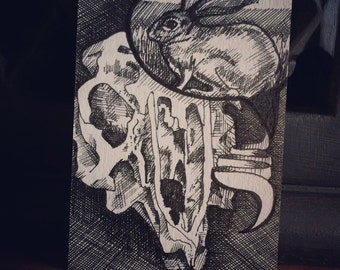 Original Pen and Ink ACEO Rabbit Skull Art Card - Was