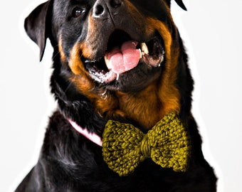 GREEN Knit Dog Bow Tie! Vegan knit, hand knit, chunky knit, dog bow tie, dog bowtie, vegan gift