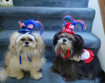 4th of July dog hat TOP HAT PATRIOTIC Pet - 2 to 20 lb dog or cat
