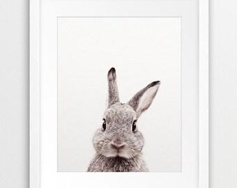 Rabbit Print, Animal Nursery Decor, Rabbit Photo, Woodland Bunny Wall Art, Nursery Prints, Animal Art, Woodlands Animal, Nursery Printable