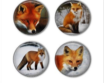 Fox magnets or fox pins, Foxes, Kits, refrigerator magnets, fridge magnets, office magnets