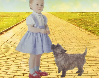 Dorothy Dress Wizard of Oz Costume Sizes Baby to Toddler