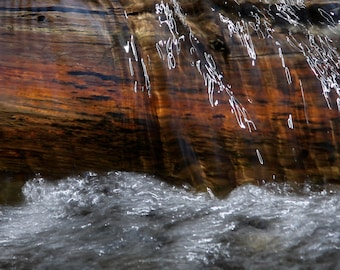 Dance of the Light, water flowing over log, stream photo, water photo, light reflecting on water, waterfall, creek photo, wall art, rustic