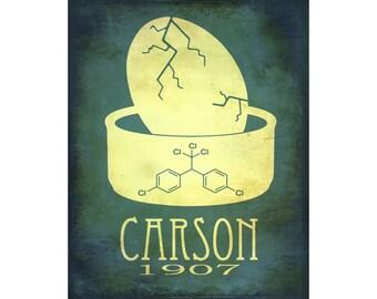 Rachel Carson 8x10 Science Art Print - Rock Star Scientist Marine Biologist, Environmental Green Movement, DDT Eggshells, Biology Art