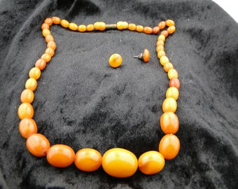 Vintage Baltic Butterscotch/EggYolk Graduated Amber Necklace with Earrings