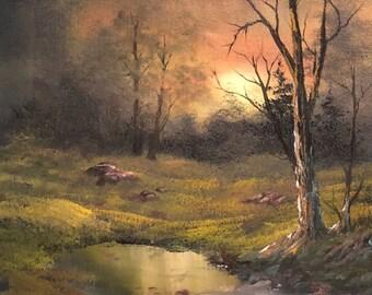 Evening sunset