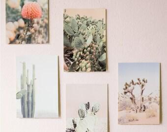 Cactus Print, Cacti Art, Cactus Photo, Minimal Photo, Desert Wall Art, Cacti Decor, Minimalist Art, Desert Photography, 5 4x6 Discounted Set