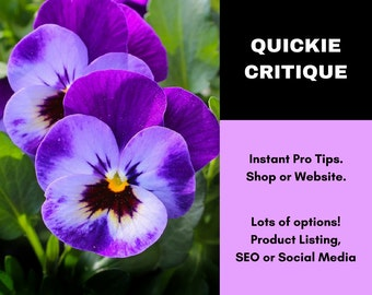 Quickie Critique - Website Critique - Etsy Writing Service - Etsy Shop Review - Etsy Copywriting Service - Etsy Critique - SEO Help