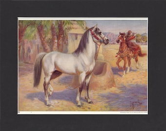 Arab Horse Print 1923 By Edward Miner Print of Signed Painting Mounted with Mat - Arabian Horse Print Arab Print Arabian Print