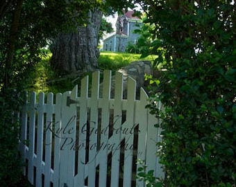 Gate to a Lovely Island House Photo - any size