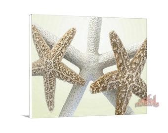Starfish Decor, Bathroom Picture, Starfish Wall Art, Bathroom Wall Art, Sea Shell Art, Seashell Picture, Shell Art, Gift for Bathroom