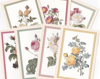 Printable Wild Rose greeting cards - 8 pcs