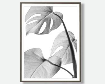Monstera Print, Large Printable Poster, Monstera Decor, Instant Download, Modern Minimalist Art, Tropical Printable, Feliss-Art