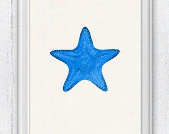 Blue starfish - Bathroom Wall decor poster , sea life print - Haeckel sea life illustration A4 print SAS072