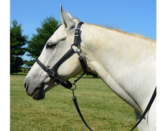 Small Pony Size** HALTER & LEAD Leather Turnout