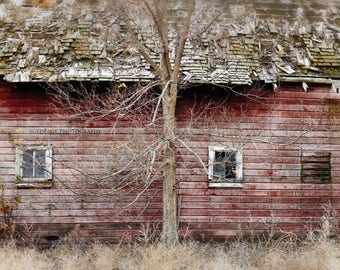 Red Barn, Rustic Farmhouse Decor, Wall Art, Country Barn, Farm Prints, Living Room Decor | 'Lean On Me'