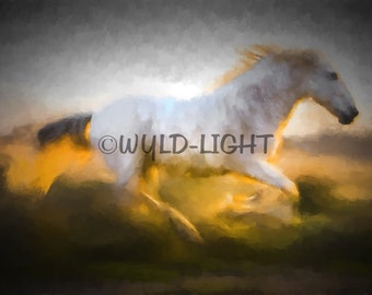 Painting Of Beautiful White Horse of the Camargue Caught Running in Provence, France!  33024 Horse Wall Art Modern Art Horse Painting