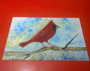 Male Cardinal Blank Card