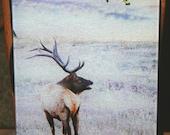 Glass Cutting Board - Elk Standing 7.75in  x 10.75in
