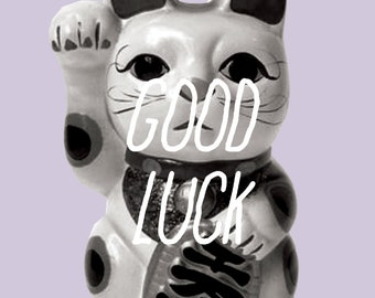 sarcastic/funny greeting card - good luck