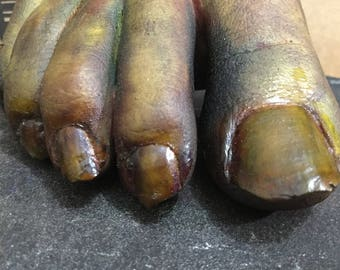 Latex severed toes (partial right male foot )
