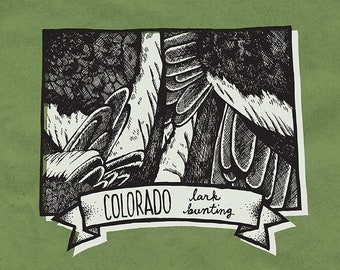Colorado State Bird Print- Lark Bunting, 8x10 inches.