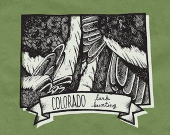 Colorado State Bird Print- Lark Bunting, 8x10 inches.
