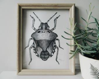 Beetle - Single 8x10 Ink Art Print