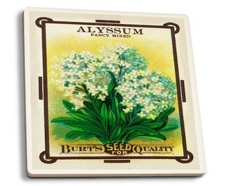 Alyssum - Vintage Seed Packet (Set of 4 Ceramic Coasters)