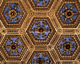Italy Photograph,Fine Art, Royal Blue, Gold,Fleur-de-lis,House of Medici ,Florence, Italian Kitchen, Italian Bedroom,Tuscan,Macaron, France
