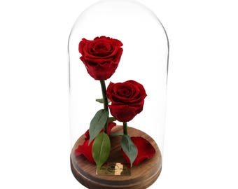 Live Forever Rose in Glass Dome, Mothers Day Gift, Home decor, Real Eternal Rose, infinity rose, Preserved Rose, Enchanted Rose, %100 Real