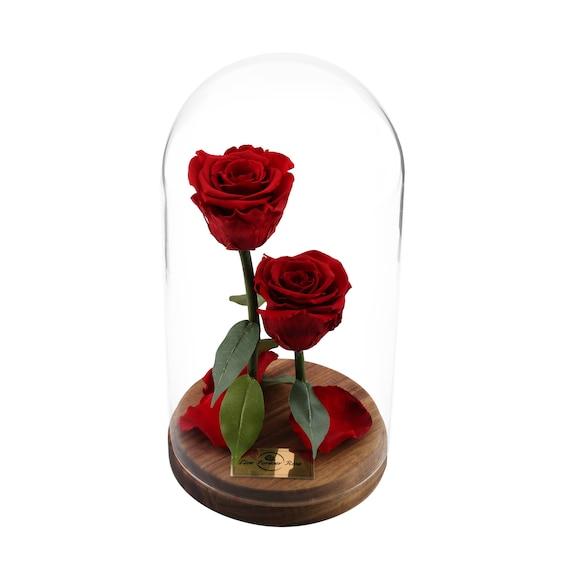 live forever rose in glass dome mother gift home decor real. Black Bedroom Furniture Sets. Home Design Ideas