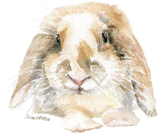 Bunny Watercolor Painting - Mini Lop Rabbit - 8 x 10 - Neutral Nursery Art - 8.5 x 11 - Giclee Print