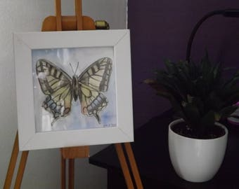 Butterfly - ORIGINAL - Drawing and Watercolour Painting