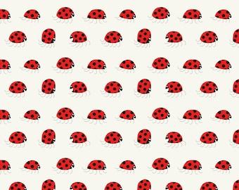 Ladybug rush - Pattern