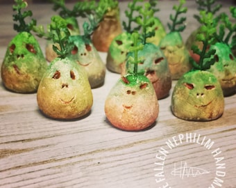Mandragora Plant Seed - The little plant that dared to dream that it was a human - Fantasy - Leaf - Root - mandrake seedling
