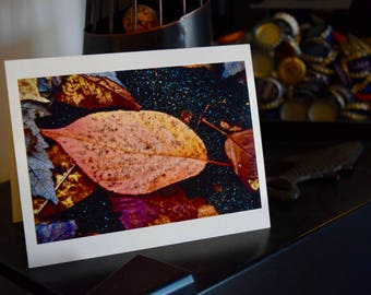 Single Fall Leaf - Print
