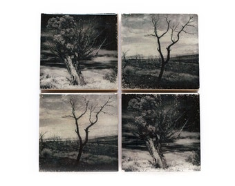 Tree Coaster Set (4 Stone Coasters, Black and White) Fine Art Nature Home Decor