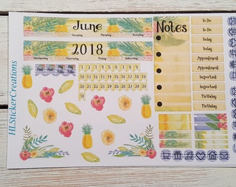 Mini Happy Planner June Monthly Kit, June, Summer, Tropical, Pineapple