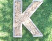 DIY Letter LARGER Planter 20 inch Monogrammed Planter Box greek sorority letter