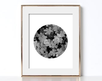 Black and White Clover Print Digital Download Printable Art Circle Art Photography Irish Design Ireland Print St Patricks Day Gift Lucky Pop